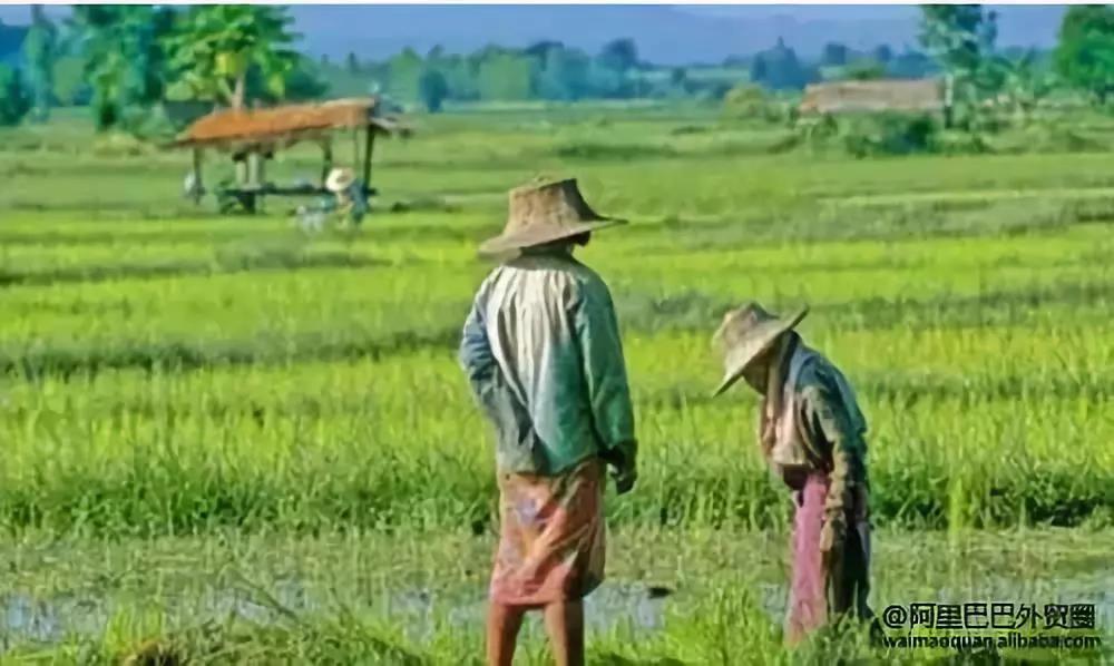 泰国开发市场攻略